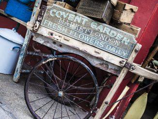 carrettp
